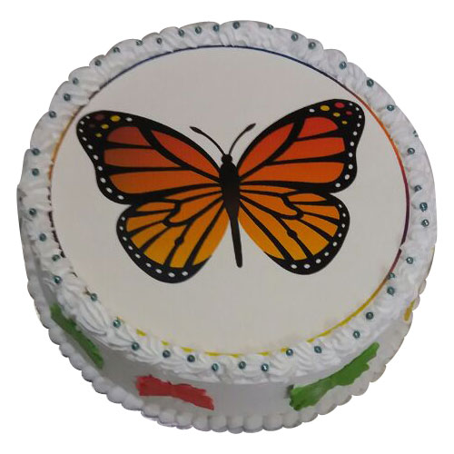 Butterfly Photo Cake