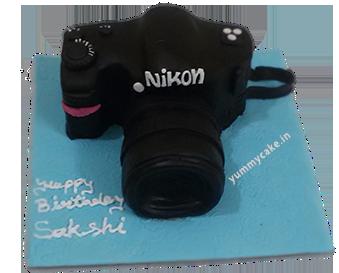 Fondant Camera Cake